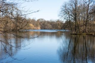 Bild: Der große See im Schlosspark Nymphenburg