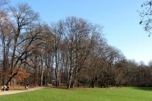 Bild: Der Bavariapark