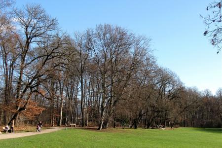 Der Bavariapark