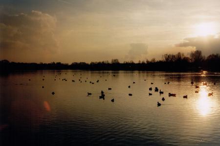 Der Feldmochinger See