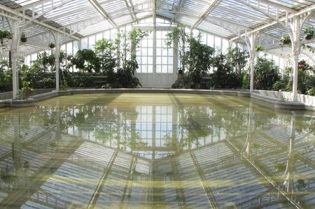 One of the glasshouses from the inside