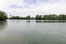 Bild: Der Langwieder See