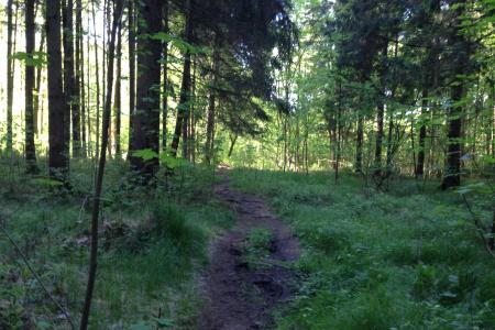 Trailrunners Paradise