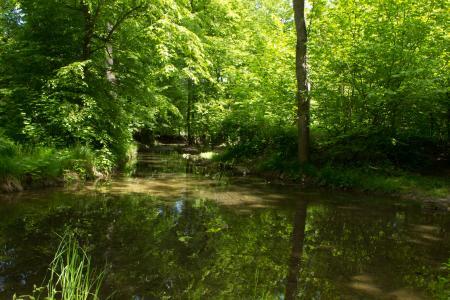 The small river Würm